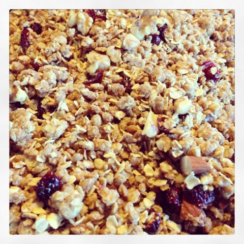 Cranberry Nut Cereal